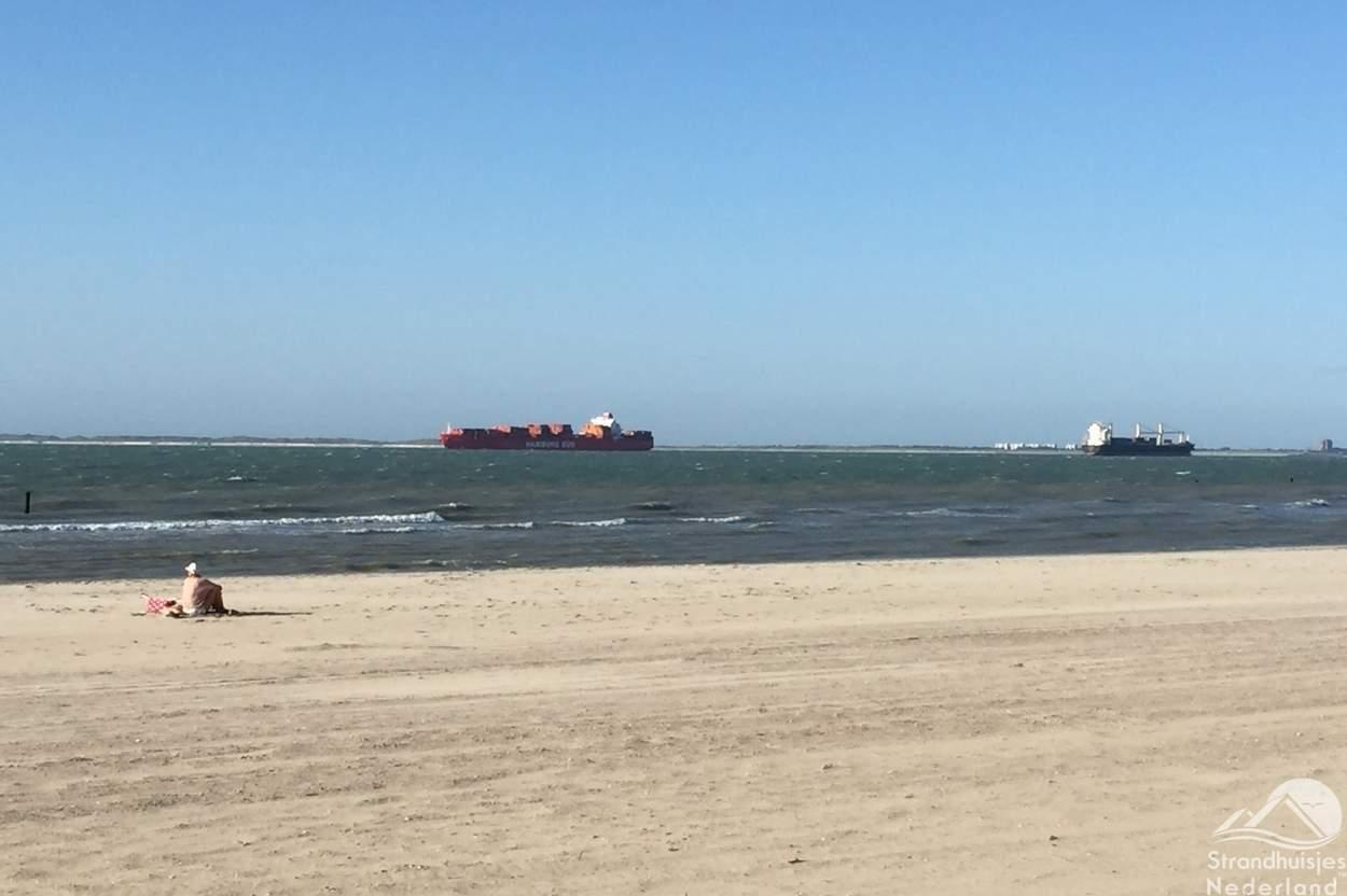 boten-zee-Nieuwvliet-1