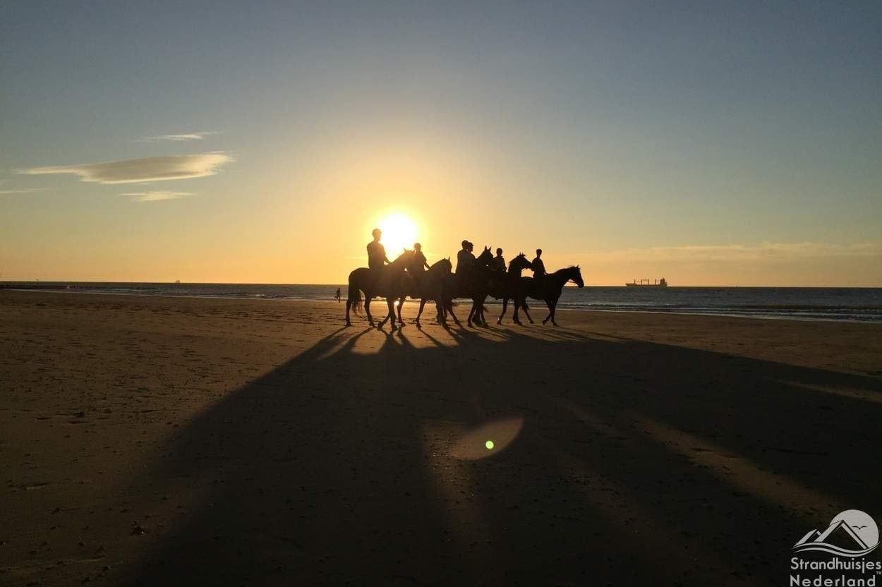 peerden-strand-Nieuwvliet