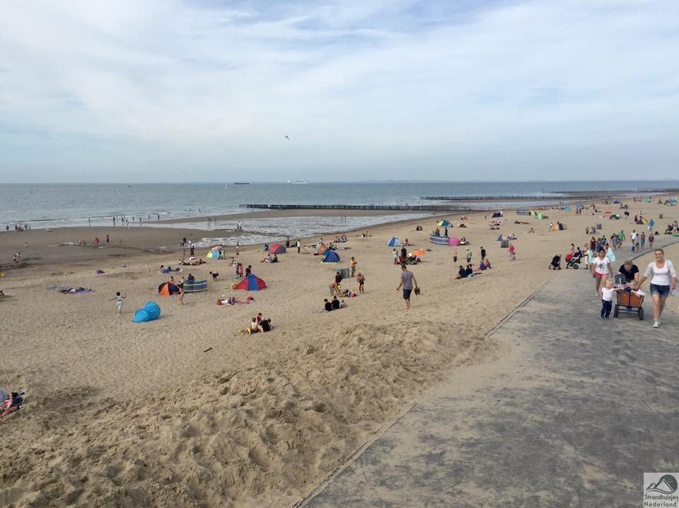 Beach ball, bolderkar, zwemmen, zonnen, frisbeeën, forten graven, lekker niks doen, vliegeren, krabben vangen, haaientanden zoeken, relaxen, mensen kijken, praten, schelpen rapen, ...........