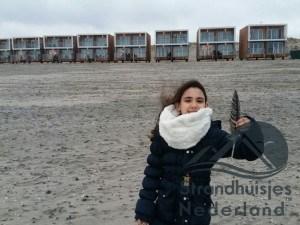 Huisjes aan zee Hoek van Holland