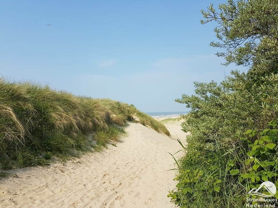 Duinen Cadzand-Bad