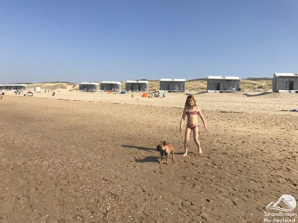 Hondje strandhuisje Cadzand