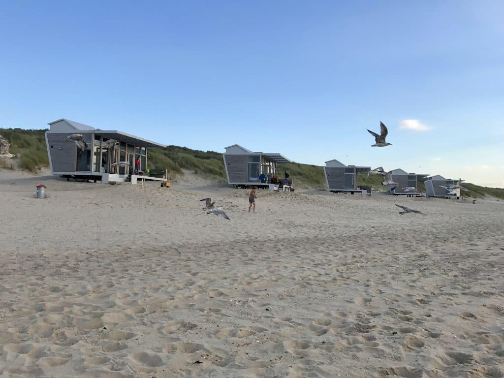 Meeuwen voor strandhuisjes Cadzand-Bad