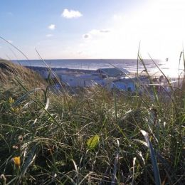 strandhuisje Wijk aan Zee